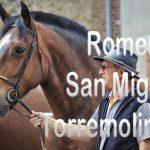 Romería San Miguel de Torremolinos 2016