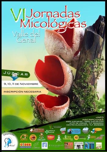 Jornadas micológicas en Juzcar