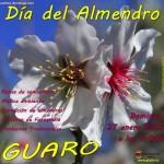 Día del Almendro de Guaro