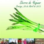 Feria del Esparrago de Sierra de Yeguas 2013
