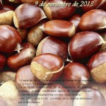 Fiesta de la Castaña de Alcaucín 2013