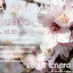 Día del almendro de Guaro 2014