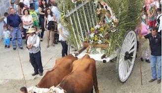 Romería Virgen de la Purísima de Benamargosa 2014