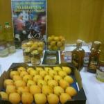 Día del Níspero de Sayalonga 2014