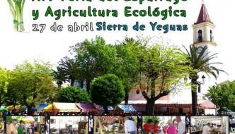Feria del espárrago de Sierra de Yeguas 2014