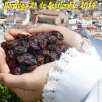 Día de la Pasa de El Borge 2014