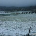 Campo nevado en Alfarnate, el pueblo de la cerezas en la Axarquía malagueña