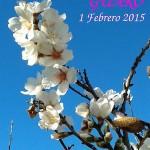 Día del Almendro en Guaro 2015