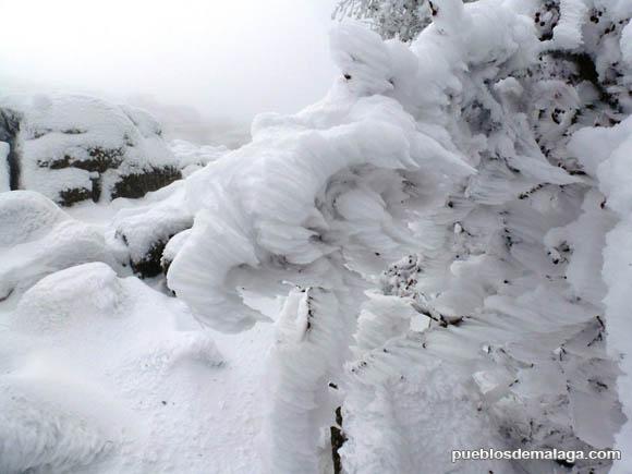 Nevada en el Torcal de Antequera el 20 de Enero de 2015