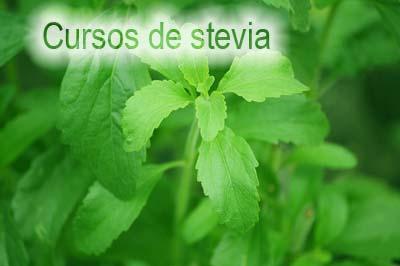 Cursos de stevia en Vélez-Málaga y Cártama par desempleados