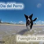 Día del Perro de Fuengirola 2015