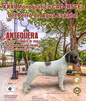 Monográfica del Perro de Agua Español en Antequera