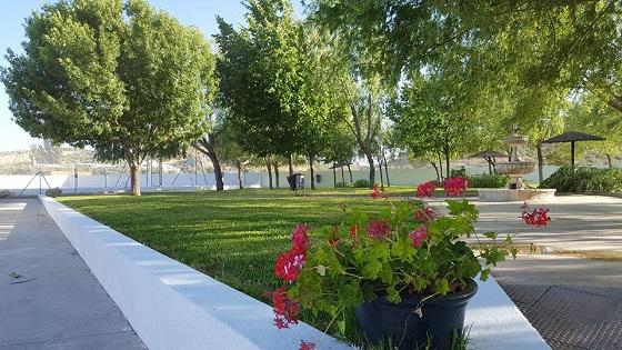 Arboles de la Piscina de agua salada con propiedades balneario en Almargen