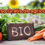 Curso gratis de agricultura ecológica en Coín