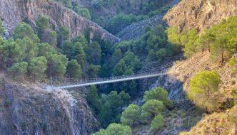 Puente Colgante El Saltillo